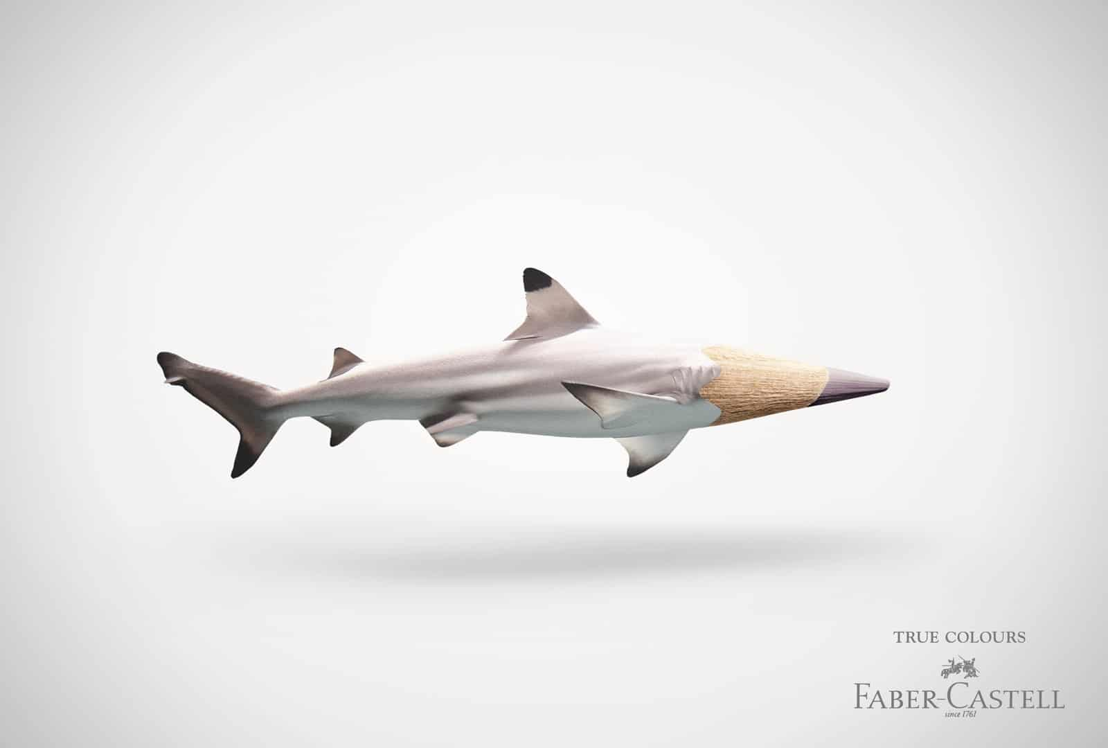 Faber-Castell : requin