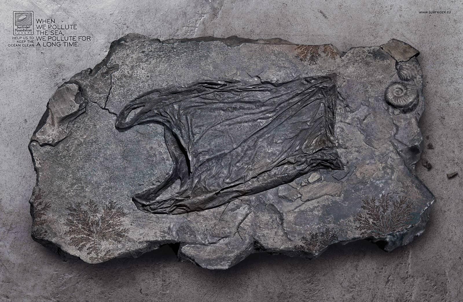 Surfrider Foundation : Sac fossilisé