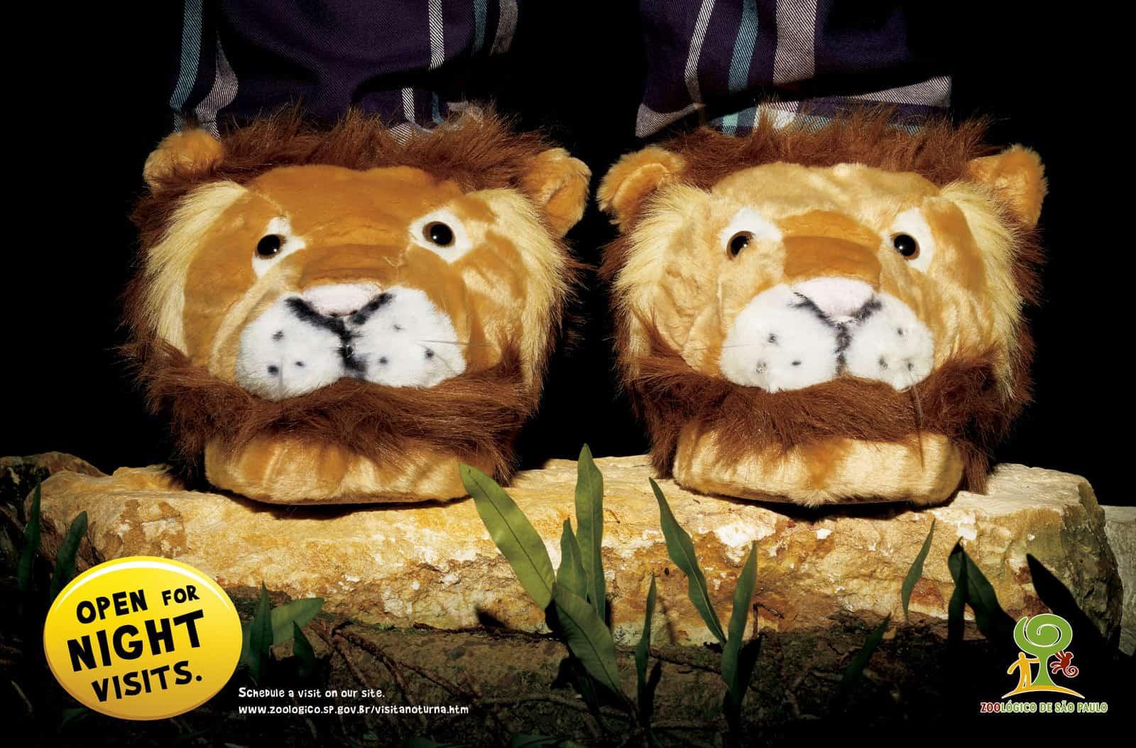 Pub Zoo São Paulo : lions