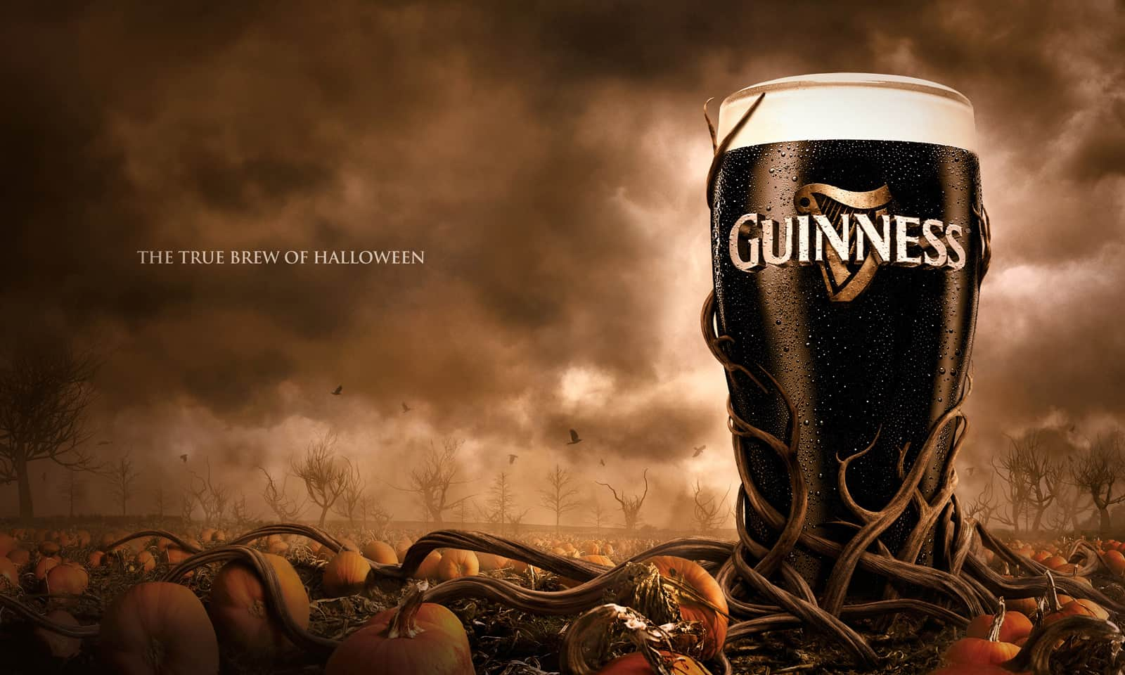 Pub Guinness