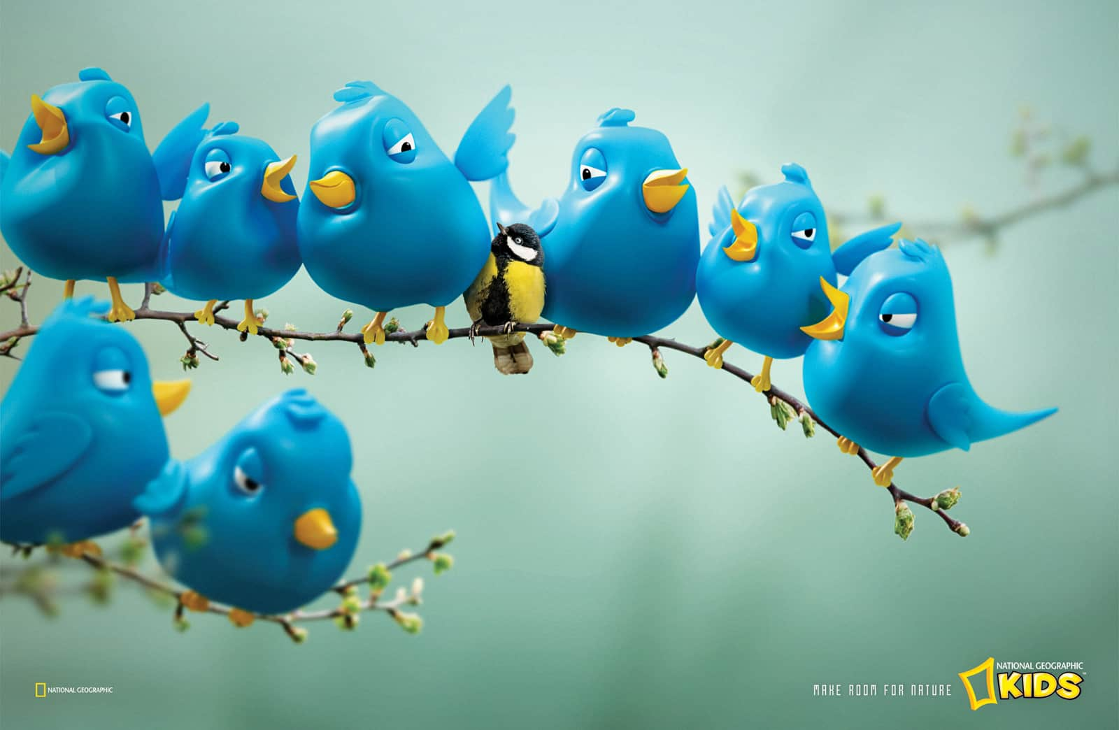 Pub National Geographic : Twitter